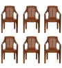High Back Chair (Set of 6) in Pear Wood Colour by Nilkamal