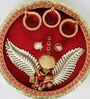 Aapno Rajasthan Red & Gold Wooden Pooja Thali