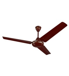 Bajaj Sdster 1200 Mm Brown Ceiling Fan