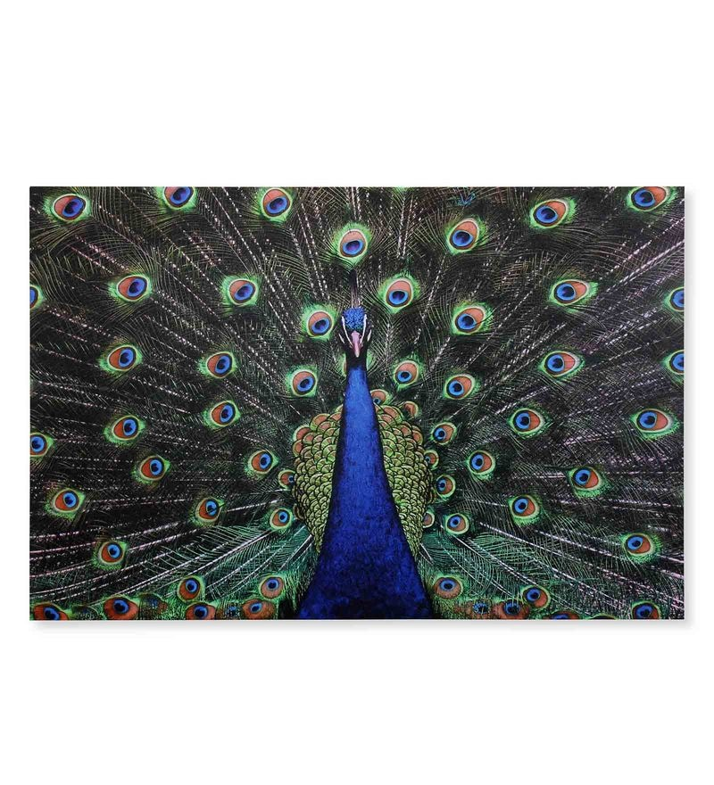Canvas 35.43 x 1.1 x 23.62 Inch Peacock Painting by @Home