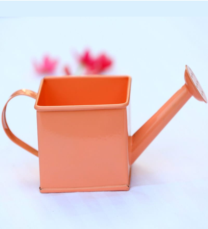 Deziworkz Square Watering Can Coral