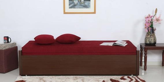 Elegant Sofa Cum Bed With Storage In Brown Colour