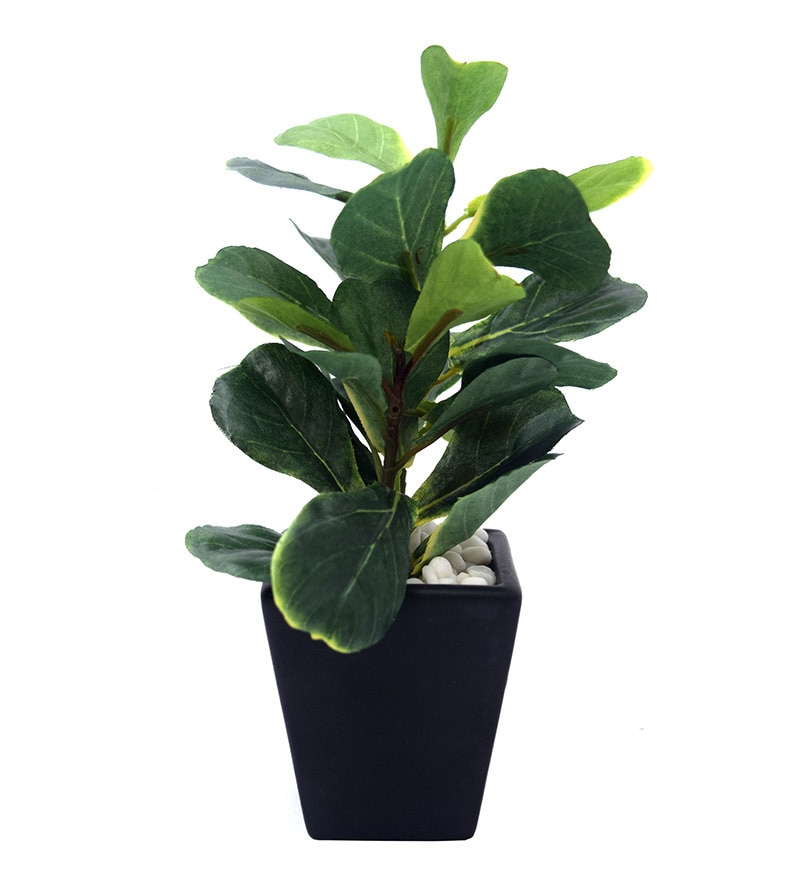 Ceramic Vase Mini Fiddle Leaf by Fourwalls