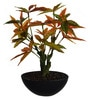 Orange Polyester Miniature Japanese Maple Plant by Fourwalls
