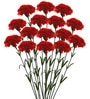 Red Synthetic Artificial Carnation Stem - Set of 15 by Fourwalls