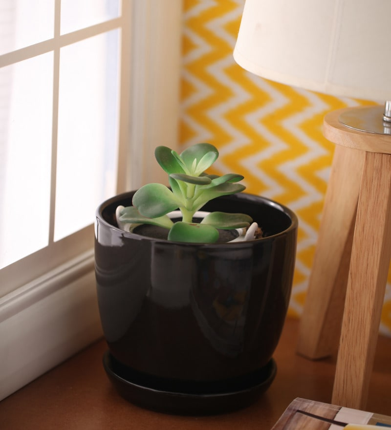 Black Cermaic Glazed Table Top Planter by Gaia