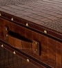 Genuine Leather Bar Cabinet in Brown Colour by Three Sixty Degree
