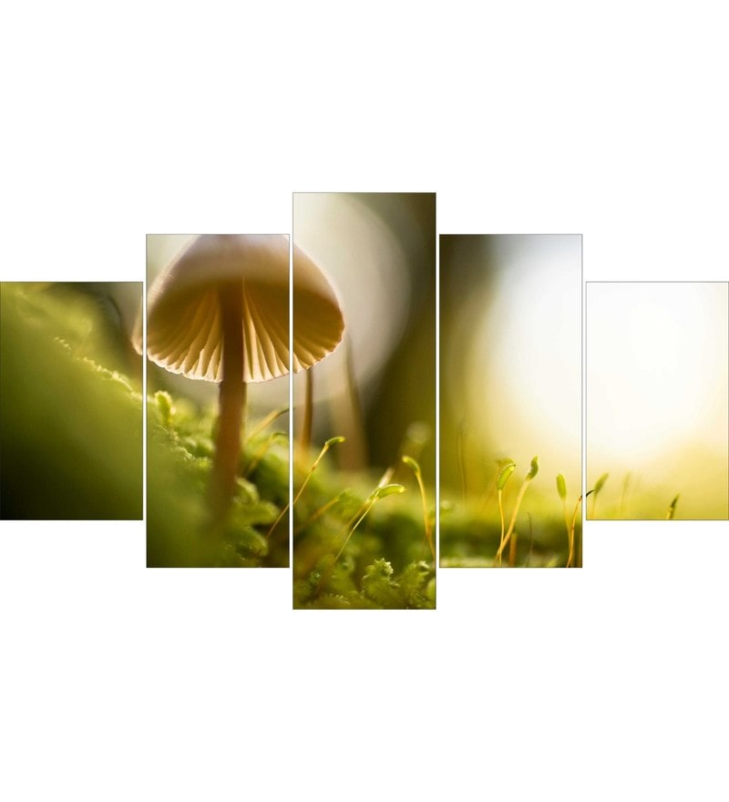 MDF Mushroom Framed Art Panel - Set of 5 by Go Hooked