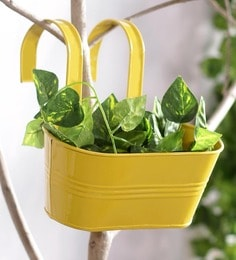Flower potsplanters online buy garden pots for plants in india yellow metal oval metal railing planter workwithnaturefo