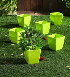 dbc8bf7bb Flower Pots Planters Online  Buy Garden Pots for Plants in India ...