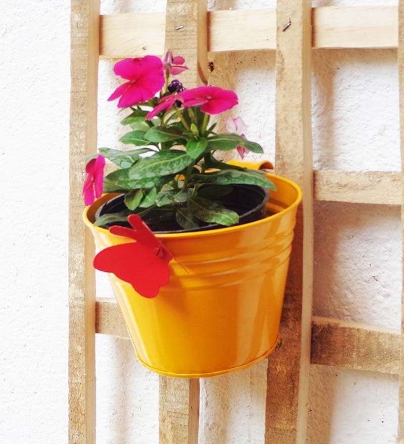 Railing Bucket With Butterfly in Yellow by Green Gardenia