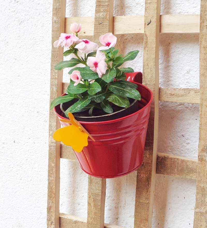 Red Metal Railing Bucket by Green Gardenia