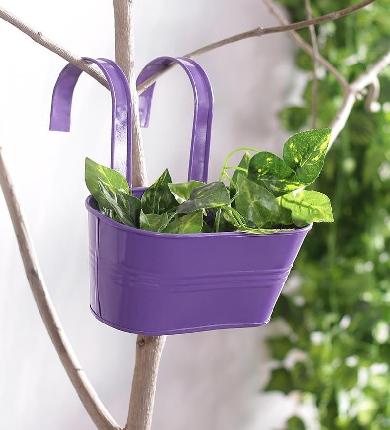 Purple Oval Railing Planter by Green Girgit