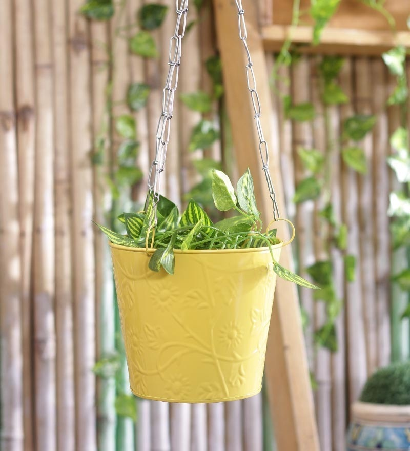 Yellow Hanging Bucket by Green Girgit