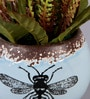 Multicolour Polyester Country Style Fly Flower with Ceramic Pot by Importwala