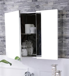 Leon Stainless Steel Bathroom Mirror Cabinet