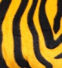 Lushomes Golden Yellow Polyester 16 x 16 Inch Zebra Skin Printed Cushion Covers - Set of 2