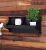 Black Engineered Wood Wall Shelf by Home Sparkle