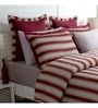 Red 100% Cotton Queen Size Duvet Cover - Set of 3 by Maspar