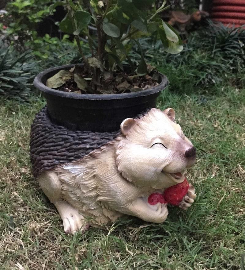 Multicolour Resin Laughing Hedgehog Decorative Planter by Wonderland