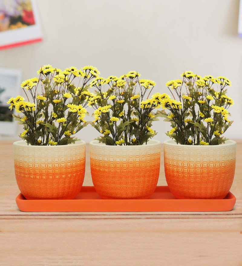 Orange  and White Terracotta Mini Garden Planter  and Tray by @Home Set Of 3