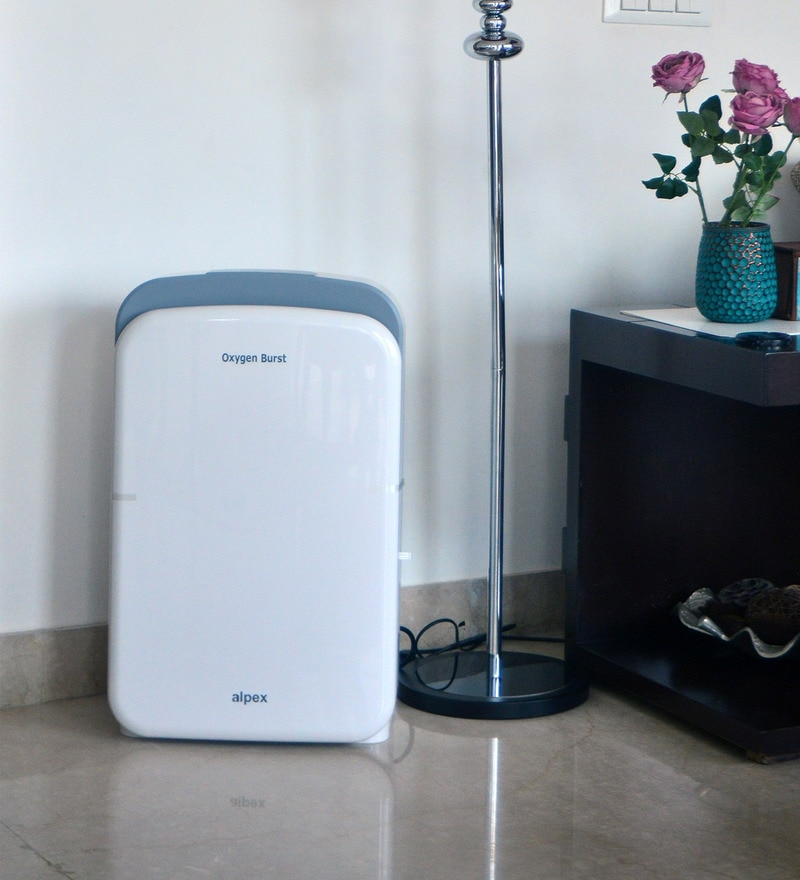Oxygen Burst Portable Room Air Purifier (White & Grey)