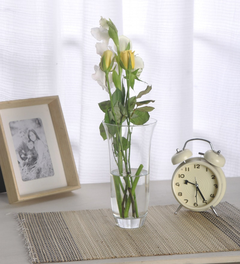 Transparent Glass Botanica Vase by Pasabahce