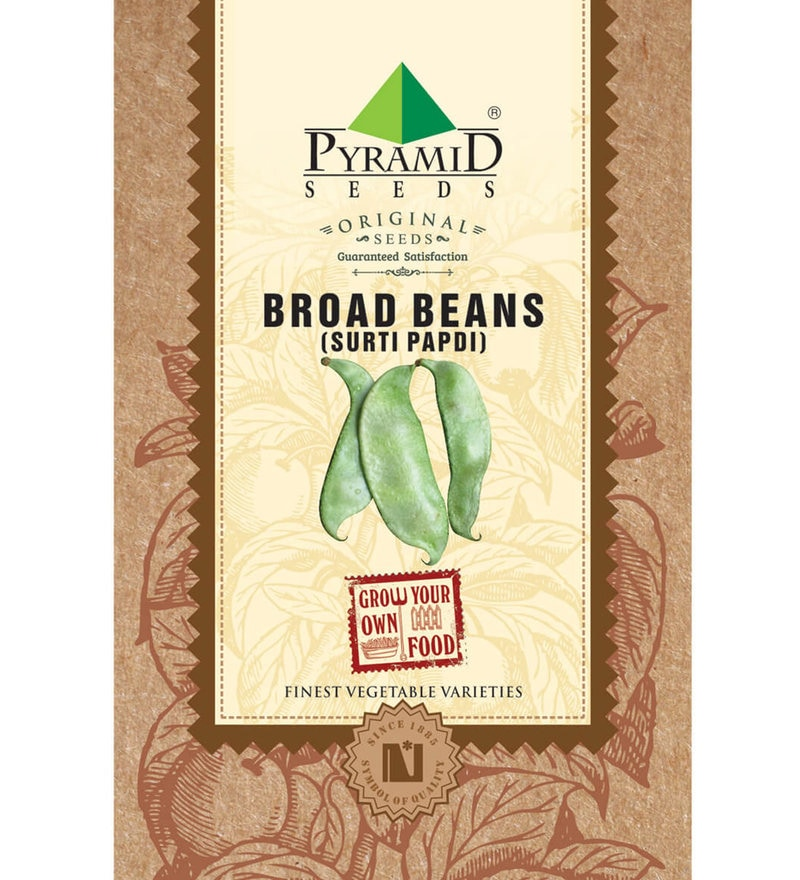 Broad Beans (Surti Papdi) Seeds by Pyramid Seeds