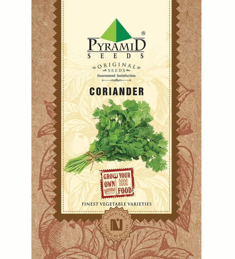 Coriander Seeds by Pyramid Seeds