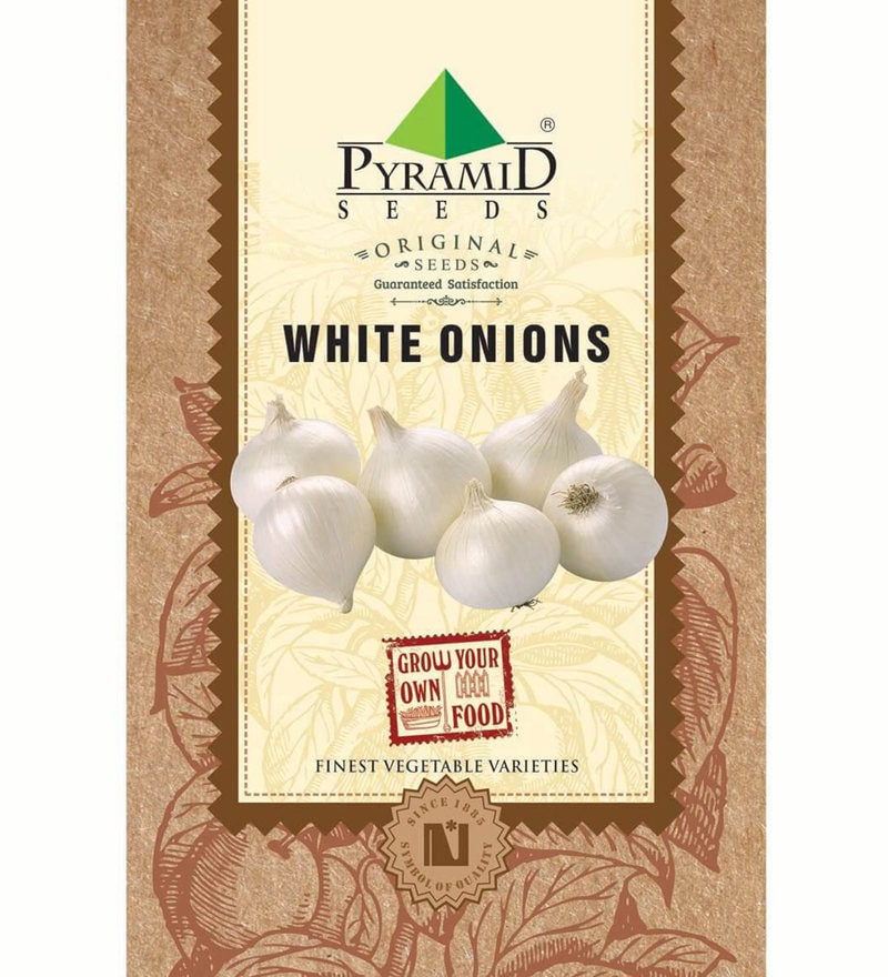 White Onion Seeds by Pyramid Seeds