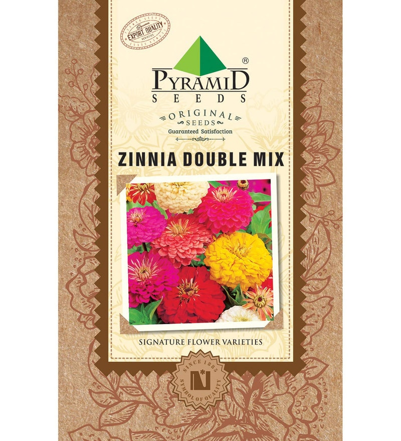 Zinnia Double Mix Seeds by Pyramid Seeds