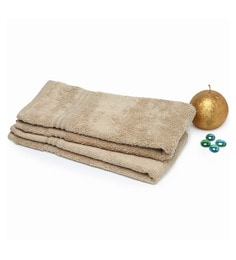 Spaces Camel 100% Cotton 16 X 24 Inch Swift Dry Hand Towel - Set Of 2