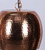 Brown Metal Pendant by Kapoor E Illuminations