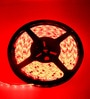 Multi Color Changing Led Strip with Remote Control-5 Meters by Tu Casa