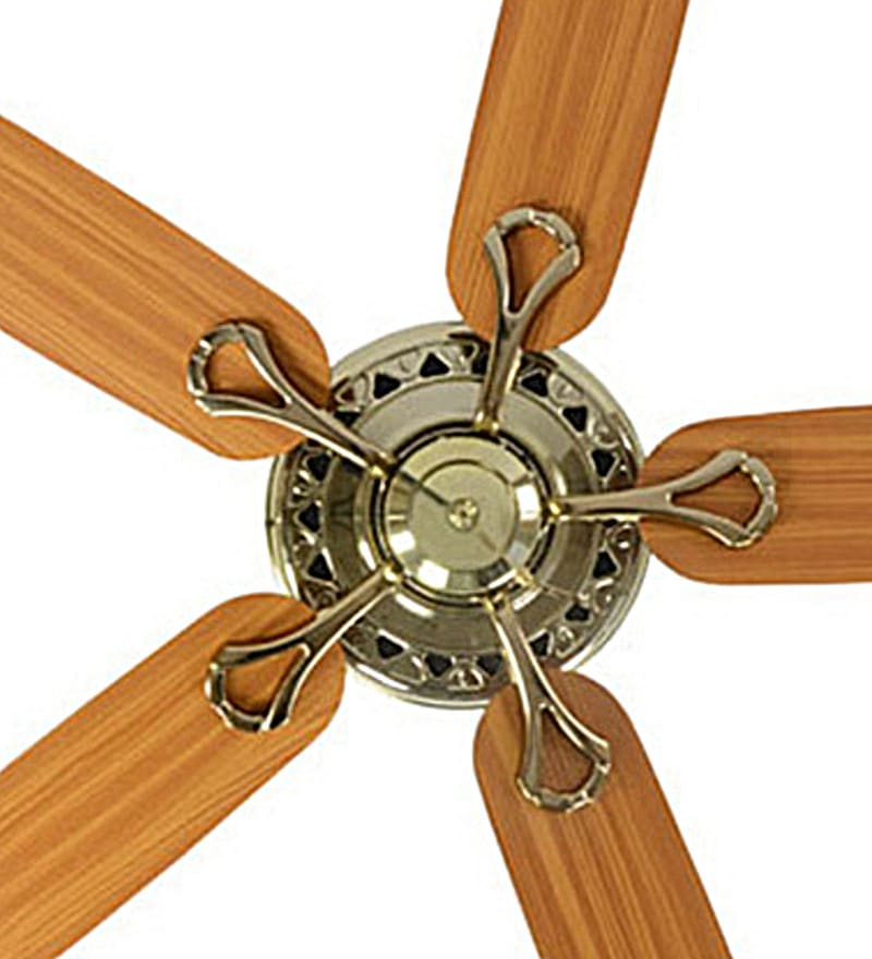 Buy usha hunter savoy bright brass ceiling fan with five blades click to zoom inout aloadofball Image collections