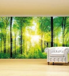 Green Non Woven Paper Sunrays Through Forest Wallpaper