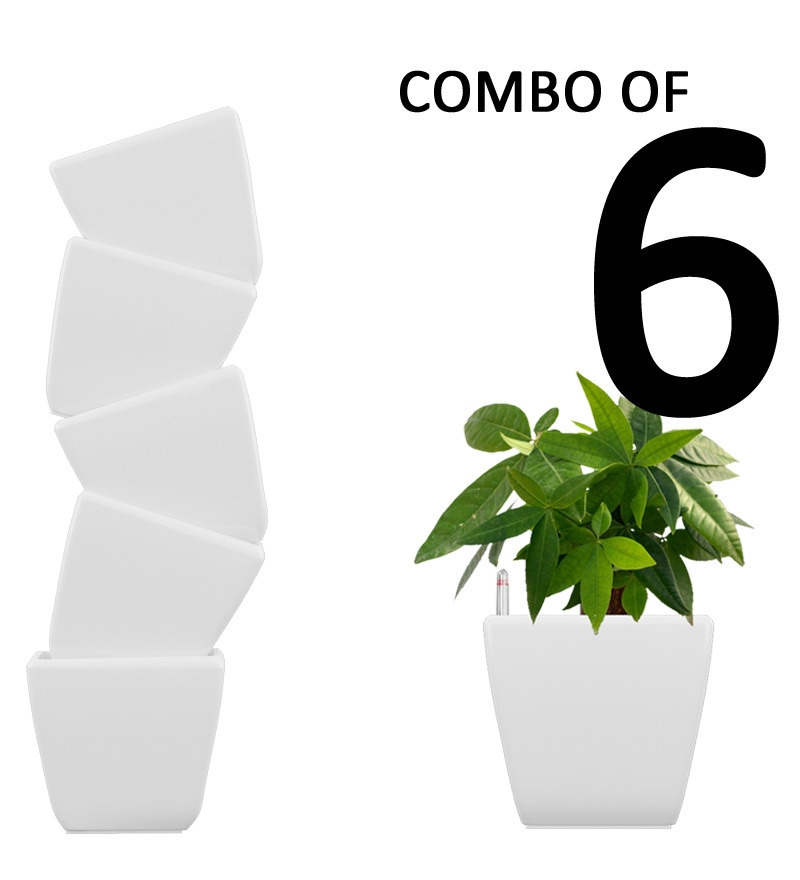 Combo for 6 Stella (White Self Watering Planter) by Yuccabe Italia